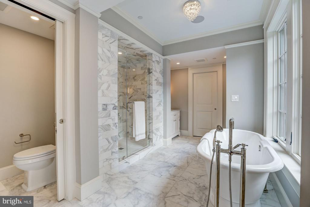 Sumptuous Master Bath - 216 8TH ST NE #B, WASHINGTON