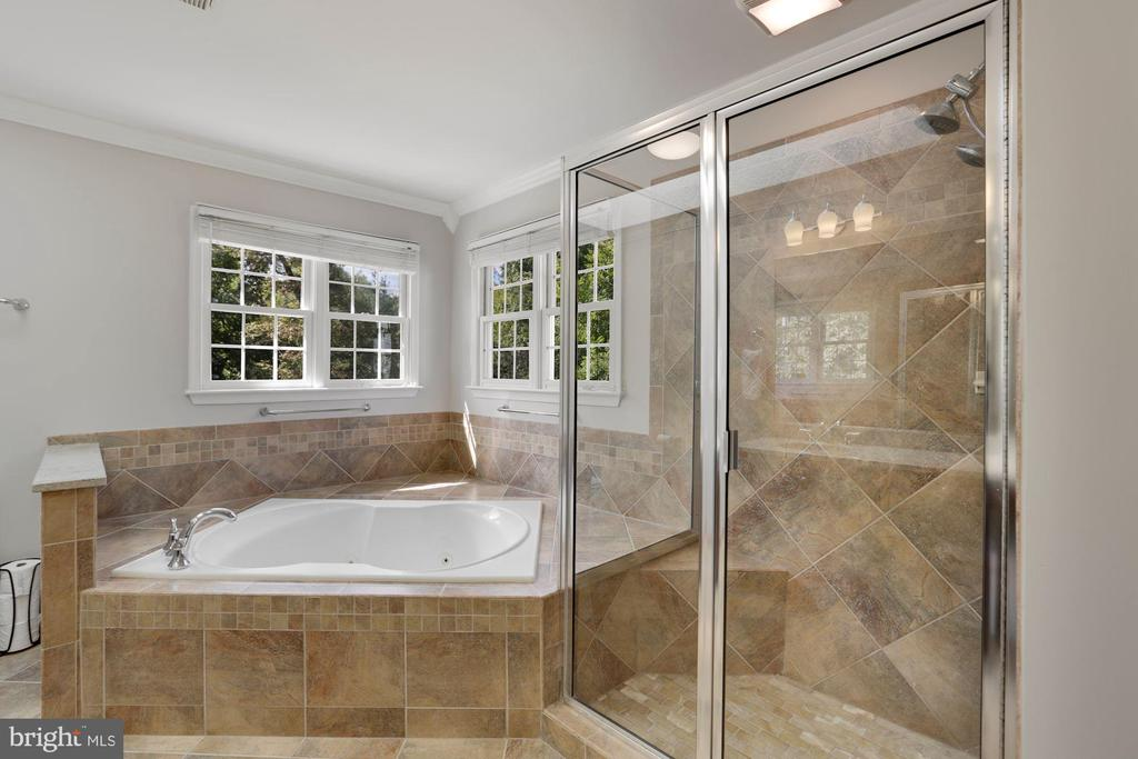 Generous master bath - 43121 FLING CT, BROADLANDS