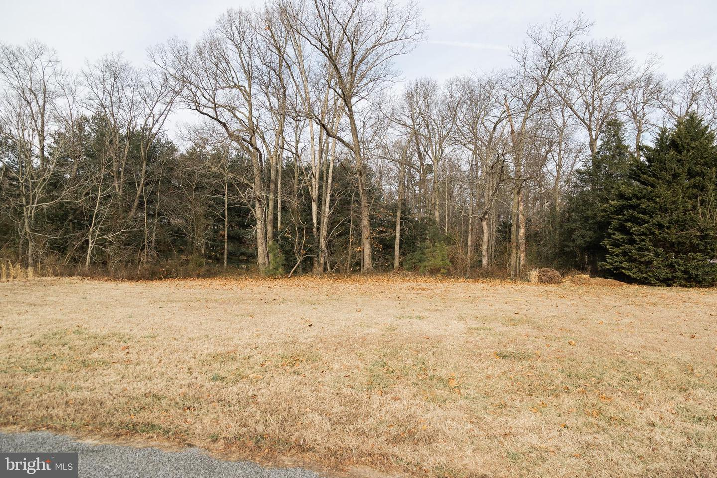 Land for Sale at Houston, Delaware 19954 United States