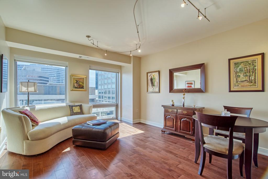 Big enough even for an oversized couch... - 1111 19TH ST N #1805, ARLINGTON