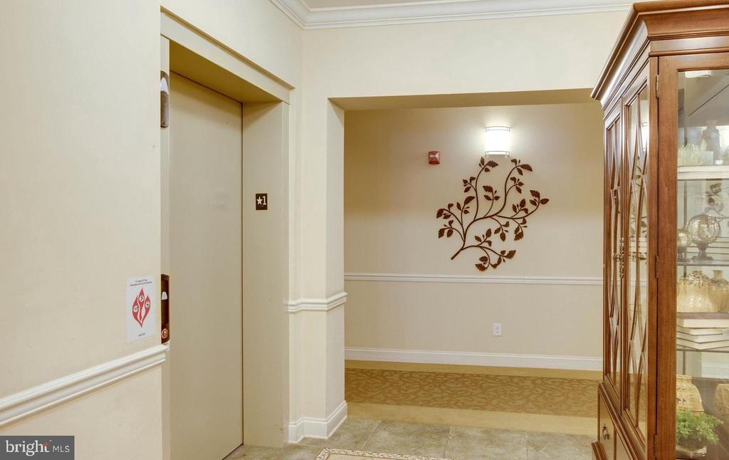 Convenient elevator to upper floors - 9202 CHARLESTON DR #301, MANASSAS