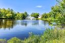 Go fishing! Catch & release pond in Ashburn Farm! - 43207 SUMMITHILL CT, ASHBURN