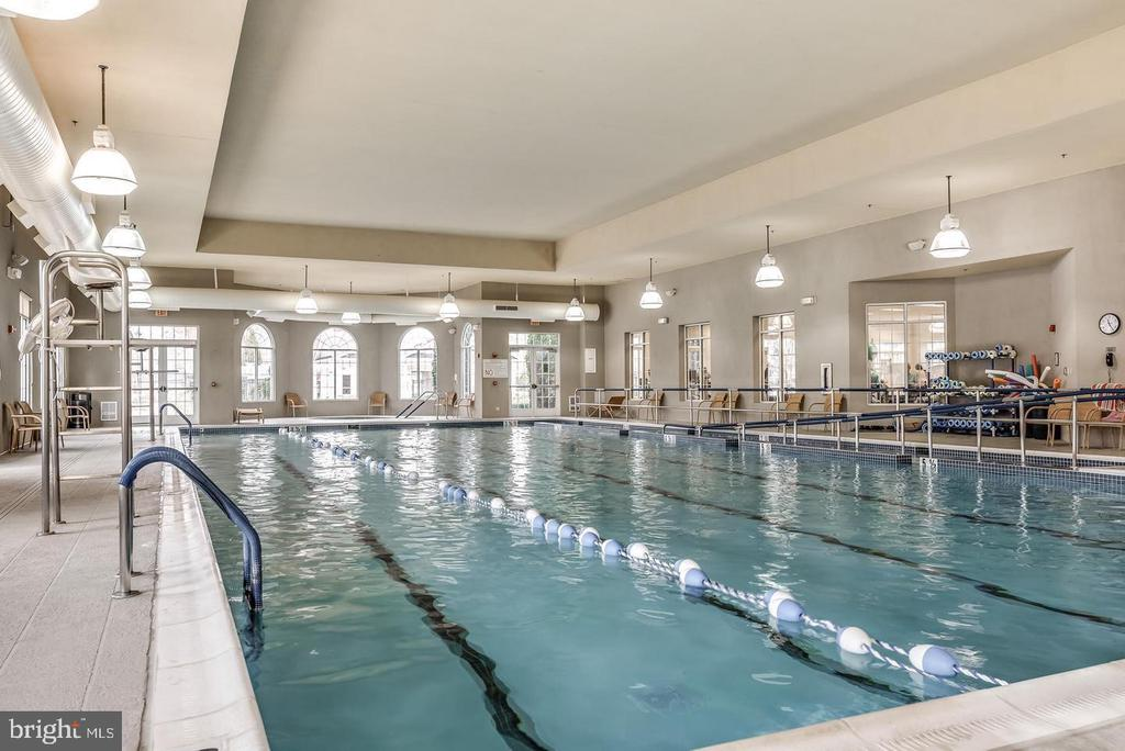 Olympic Size INDOOR Pool - 20590 HOPE SPRING TER #104, ASHBURN