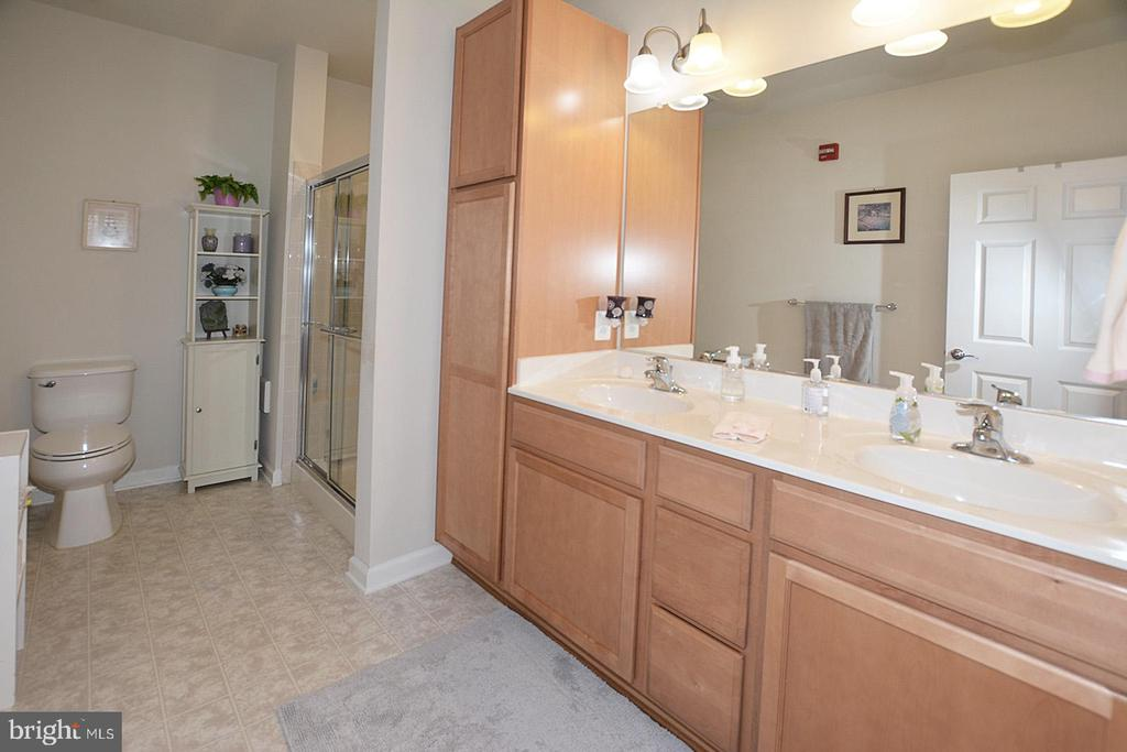 Owners Bath with double Sinks - 20590 HOPE SPRING TER #104, ASHBURN
