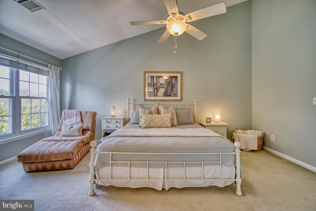 Spacious Primary Bedroom - 14794 TRUITT FARM DR, CENTREVILLE