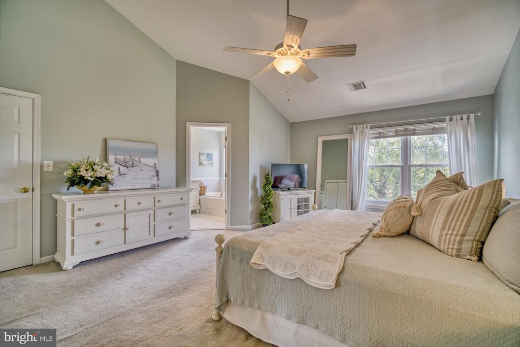 Spacious Primary Bedroom  with Walk-in Closet - 14794 TRUITT FARM DR, CENTREVILLE