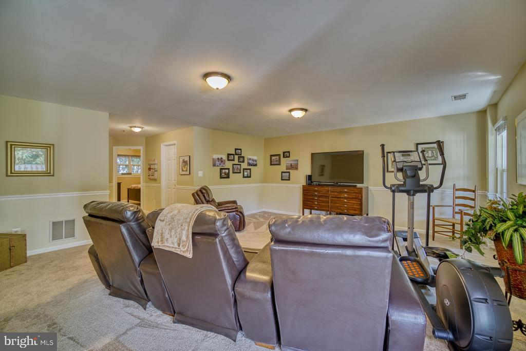 Fully Finished Basement - Spacious Rec Room - 14794 TRUITT FARM DR, CENTREVILLE