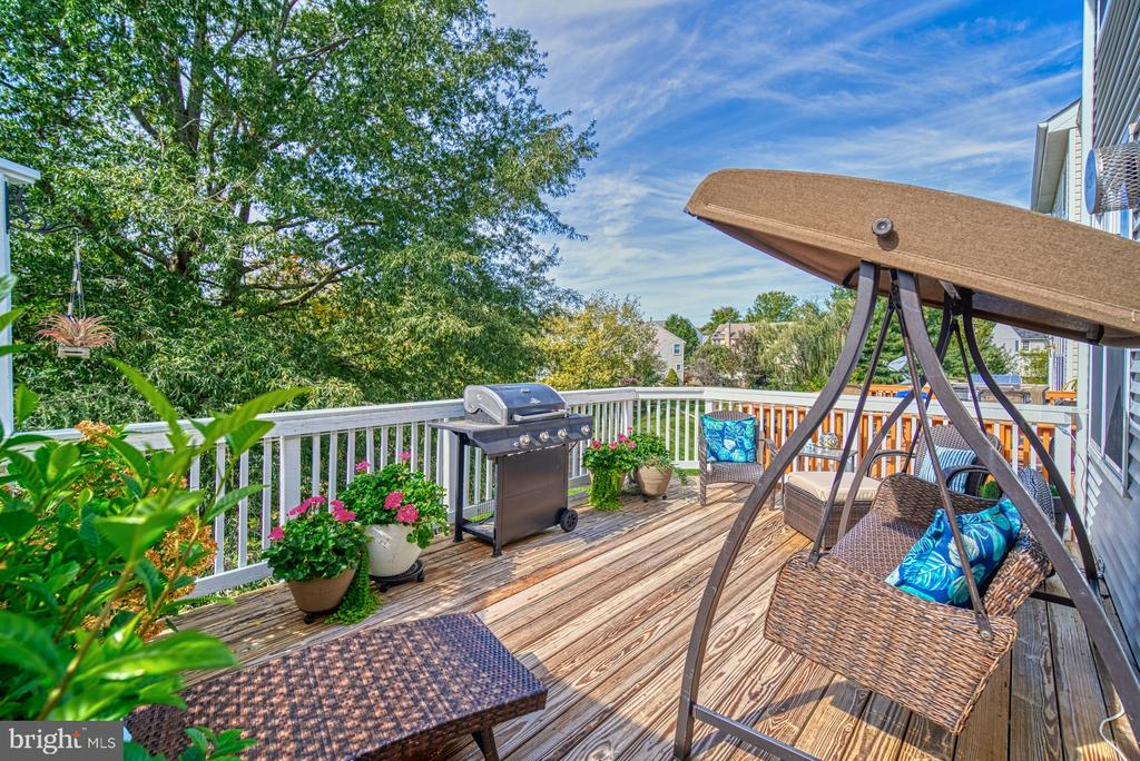 Private Deck backs to trees, tot-lot - 14794 TRUITT FARM DR, CENTREVILLE
