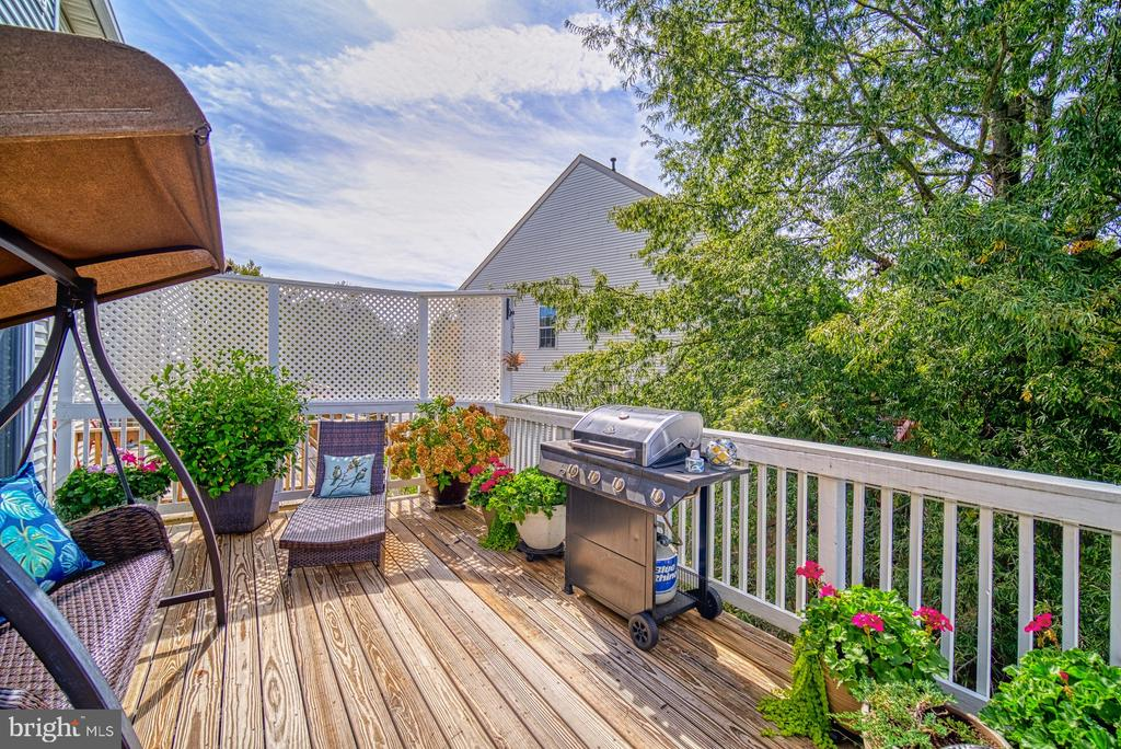 Deck rebuilt 2019, Enjoy  your own Private Oasis - 14794 TRUITT FARM DR, CENTREVILLE