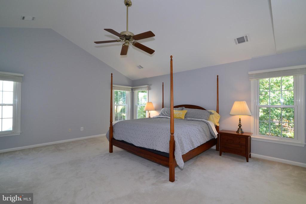 Master Bedroom is bright and welcoming - 915 SPRING KNOLL DR, HERNDON