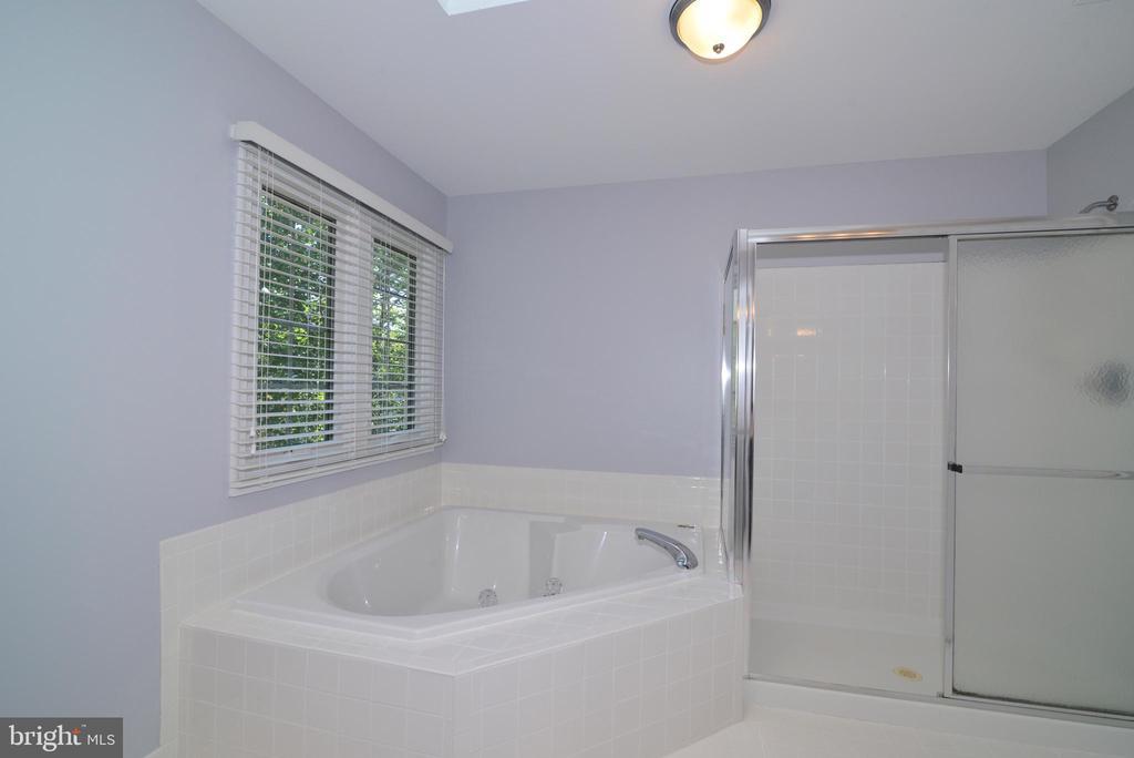 Master Bath - 915 SPRING KNOLL DR, HERNDON