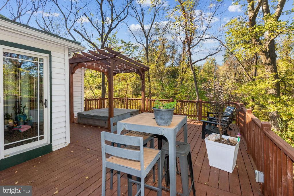 Deck off main level with hot tub - 39852 THOMAS MILL RD, LEESBURG
