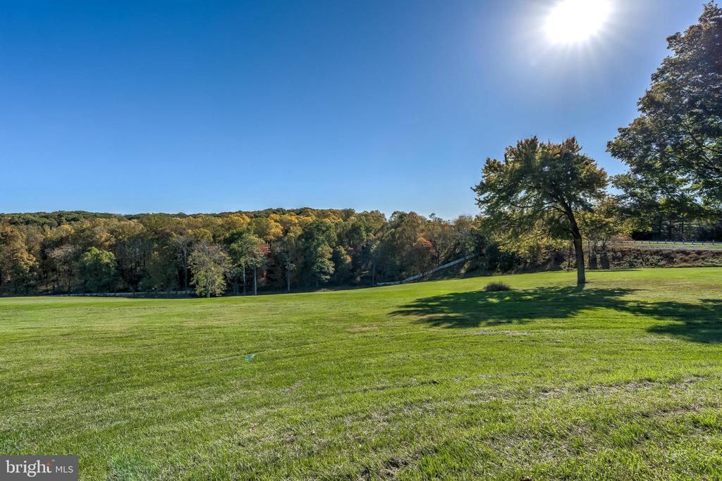 View - 17706 OLD FREDERICK ROAD, MOUNT AIRY