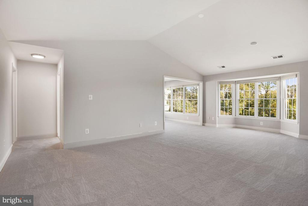 Master Bedroom w/ Cathedral Ceiling & Amazing View - 19998 PALMER CLASSIC PKWY, ASHBURN