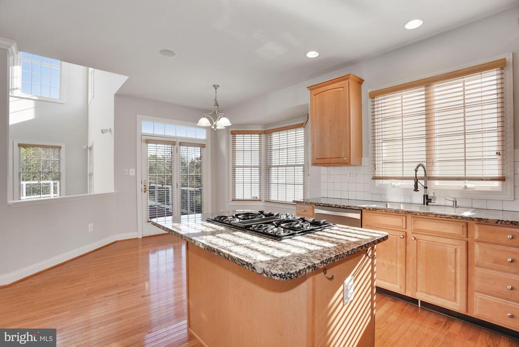 Kitchen Opens to Breakfast Area & Family Room - 19998 PALMER CLASSIC PKWY, ASHBURN