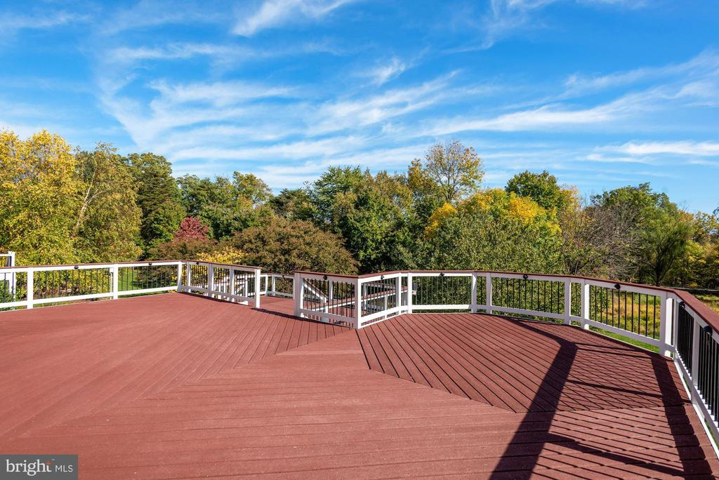 Great Deck Backs to Trees & Golf Course - 19998 PALMER CLASSIC PKWY, ASHBURN