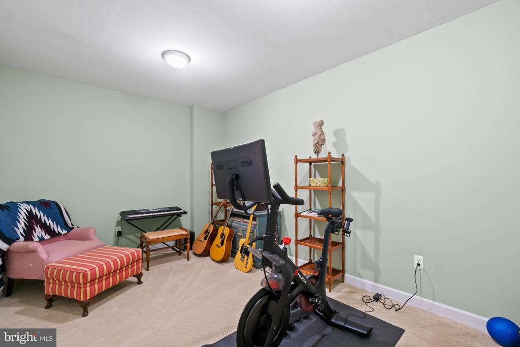 Bonus Room - 18109 OAK RIDGE DR, PURCELLVILLE