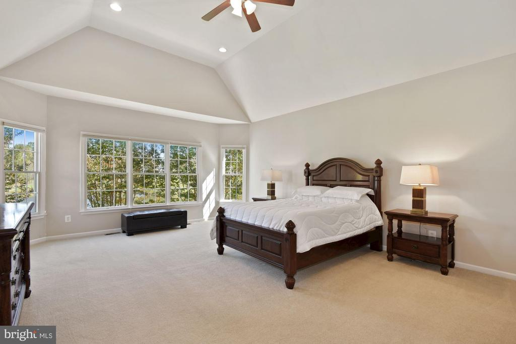 First Floor Master w/ Cathedral Ceiling - 19658 OLYMPIC CLUB CT, ASHBURN