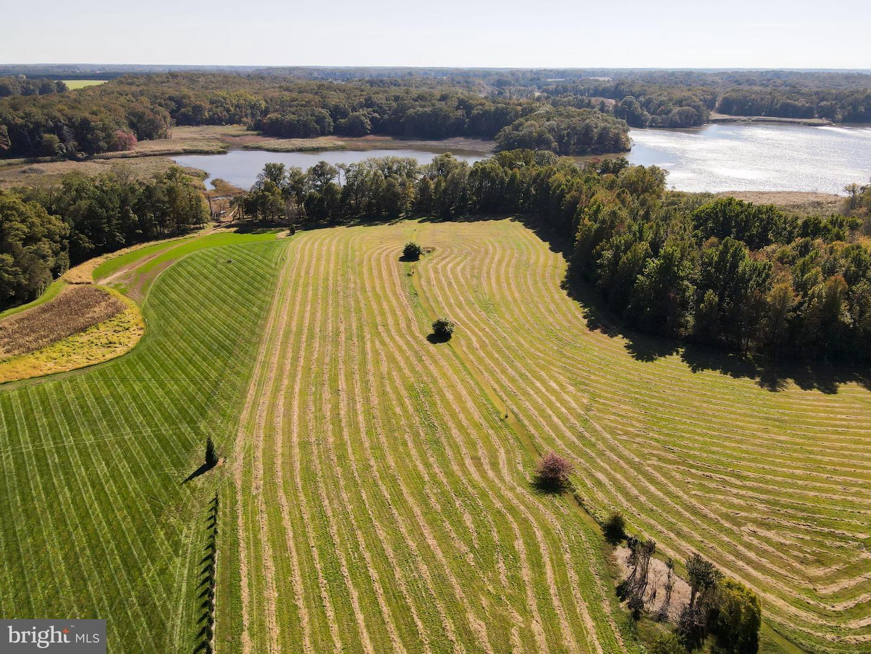 土地 為 出售 在 Earleville, 馬里蘭州 21919 美國
