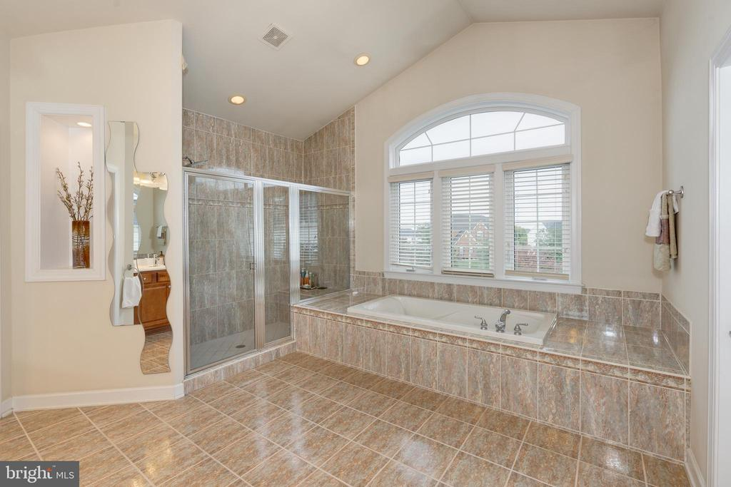 UL - Owner's Bath - 42917 VIA VENETO WAY, ASHBURN