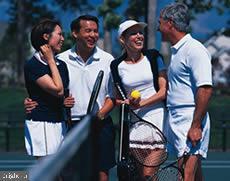 Community Tennis - 43218 BALTUSROL TER, ASHBURN
