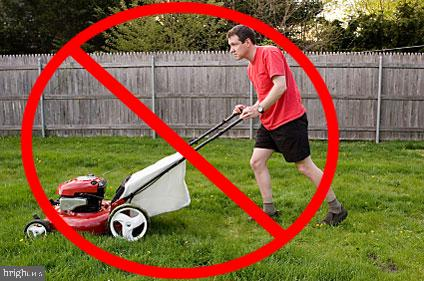 Full Lawn and Landscape Maintenance - 43218 BALTUSROL TER, ASHBURN