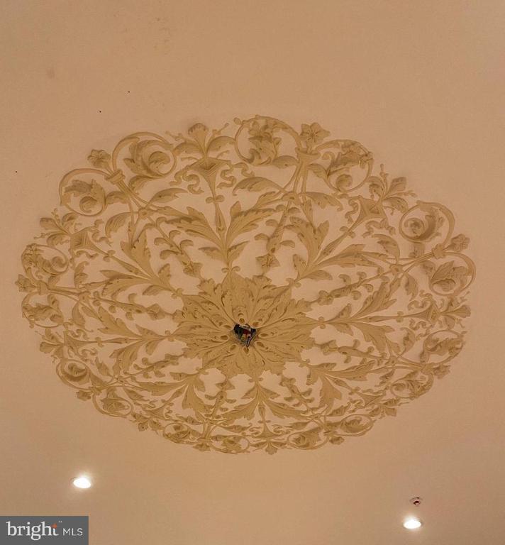 1st Floor Handmade ceiling Medallion - 2211 MASSACHUSETTS AVE NW, WASHINGTON