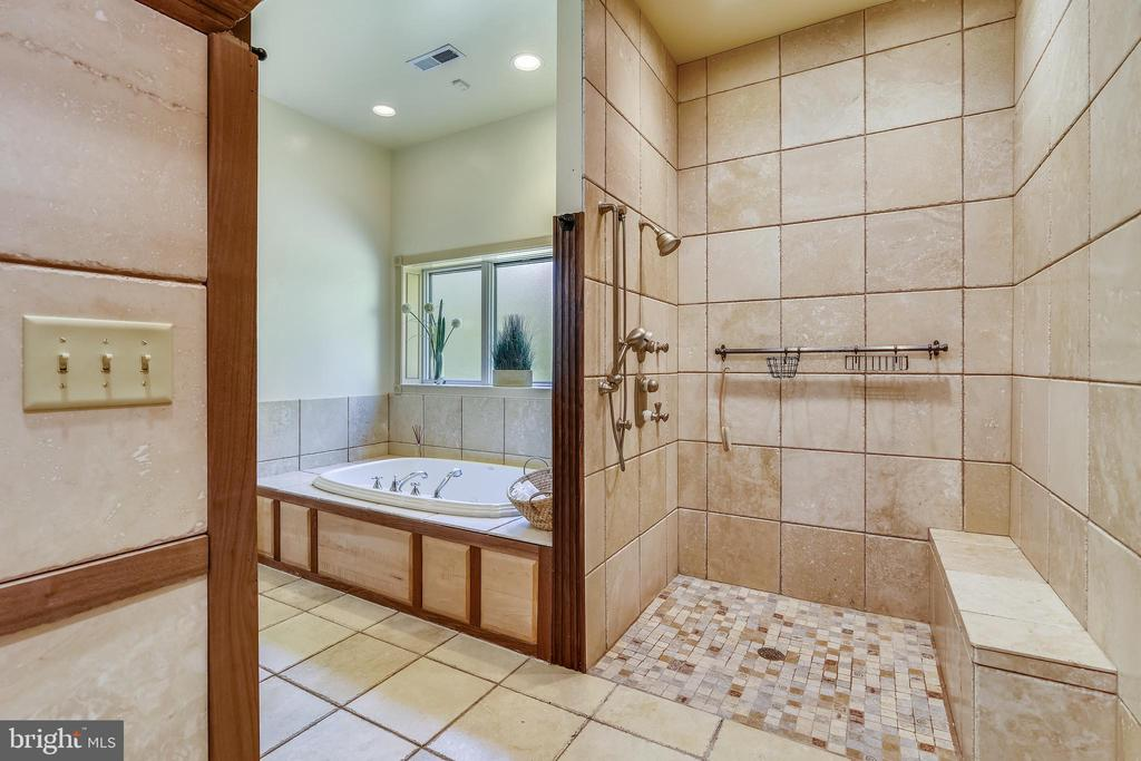 Owner's European Shower - 20448 OATLANDS CHASE PL, LEESBURG