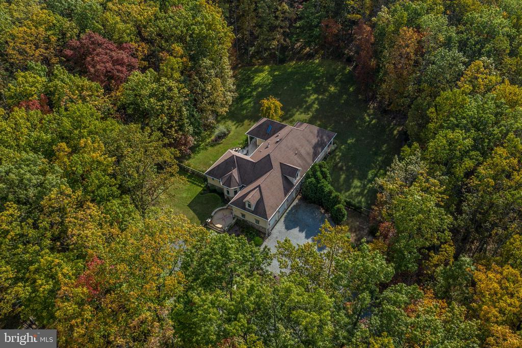 Resting in a quiet, forested retreat! - 20448 OATLANDS CHASE PL, LEESBURG