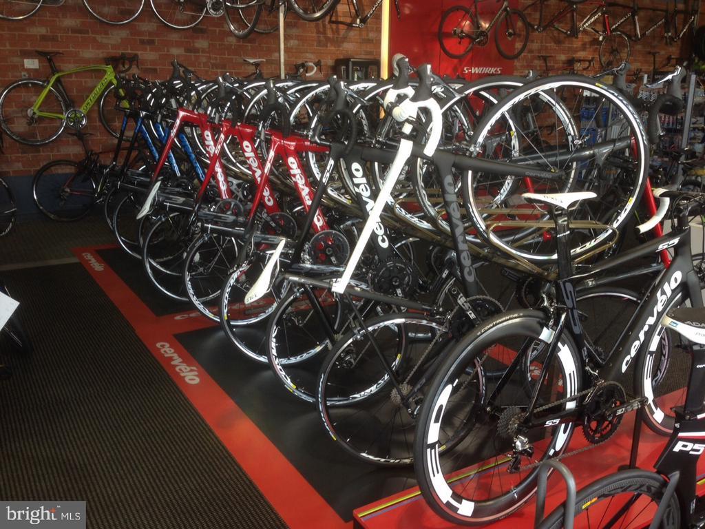 Nearby biking trail and multiple bike shops - 1174 N VERNON ST, ARLINGTON
