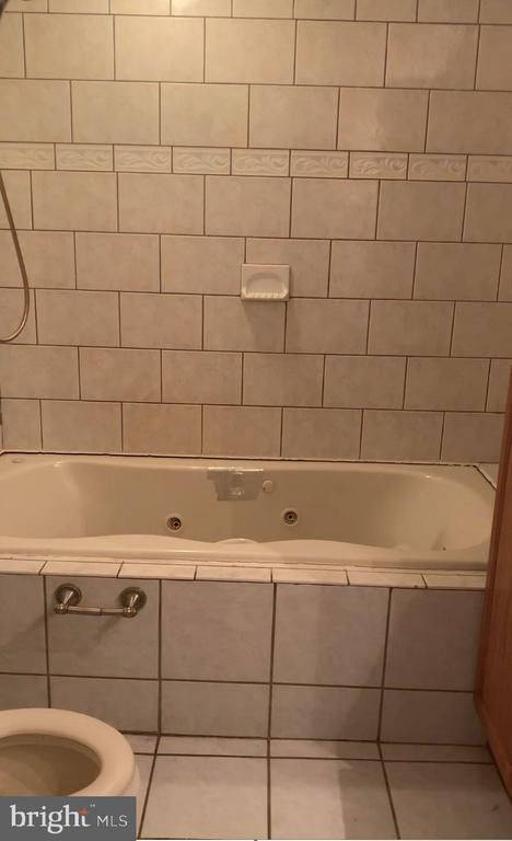 Full bath with sunken jacuzzi tub - 17320 MINE RD, DUMFRIES