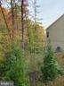Everyday views. - 18228 RED MULBERRY RD, DUMFRIES
