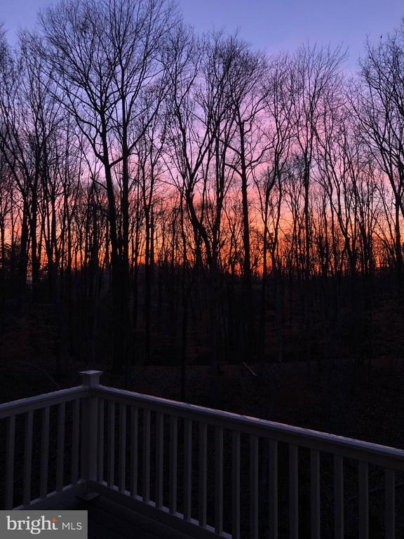 This is your view after a long workday. Unwind! - 18228 RED MULBERRY RD, DUMFRIES