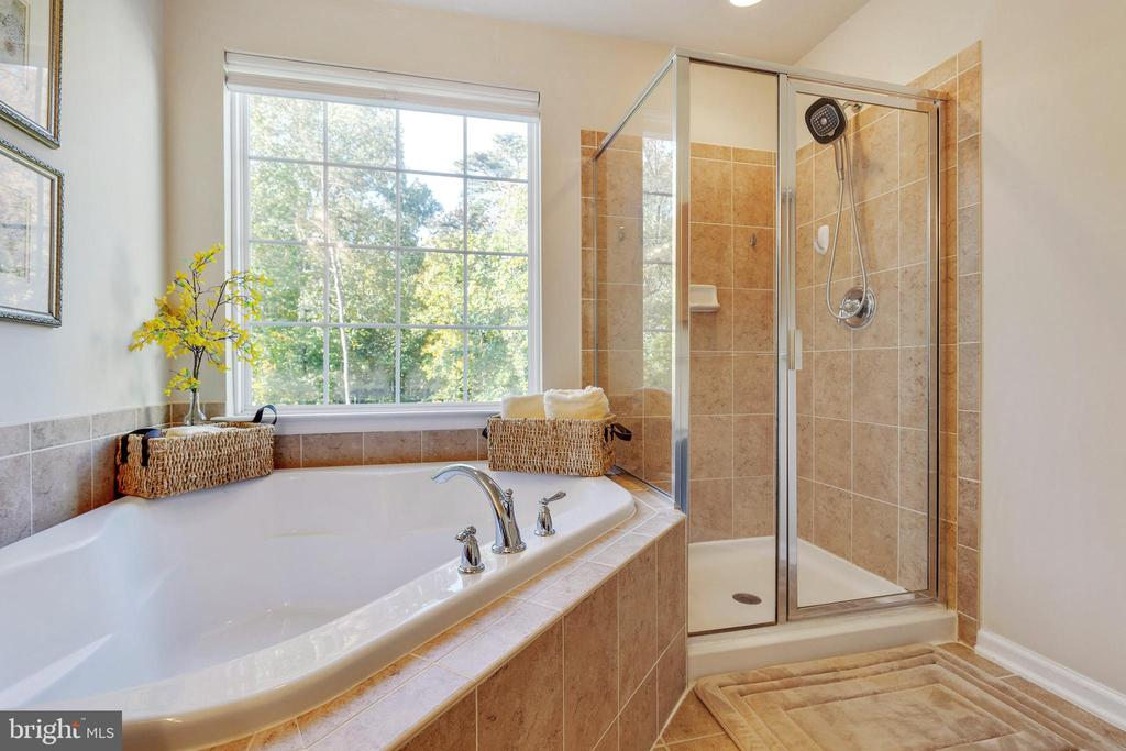 Master Bath - 42762 KEILLER TER, ASHBURN
