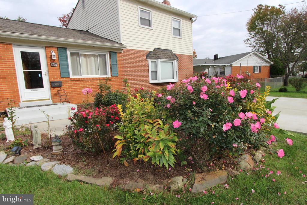 Rose Garden in the Front of House - 7707 DUBLIN DR, MANASSAS