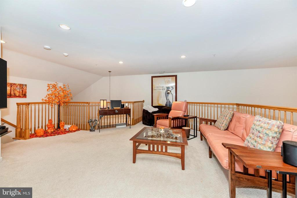Upper level family room area - 2513 MILL RACE RD, FREDERICK