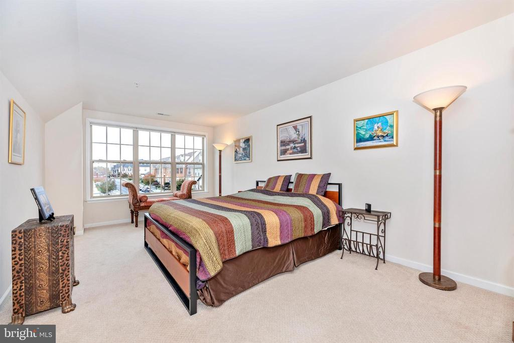 2nd Bedroom with walk-in closet - 2513 MILL RACE RD, FREDERICK