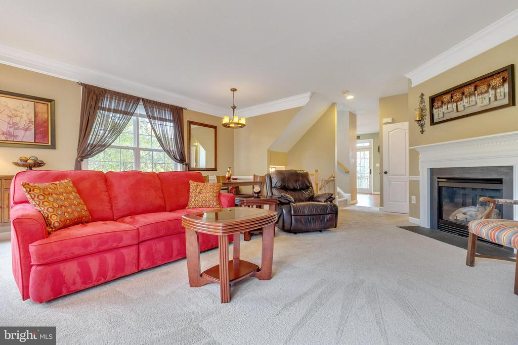 Spacious Living Space with Gas Fireplace - 42475 MAGELLAN SQ, ASHBURN