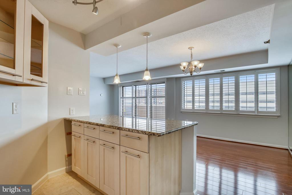 Kitchen bar with upgraded storage in cabinets - 1301 N COURTHOUSE #1607, ARLINGTON