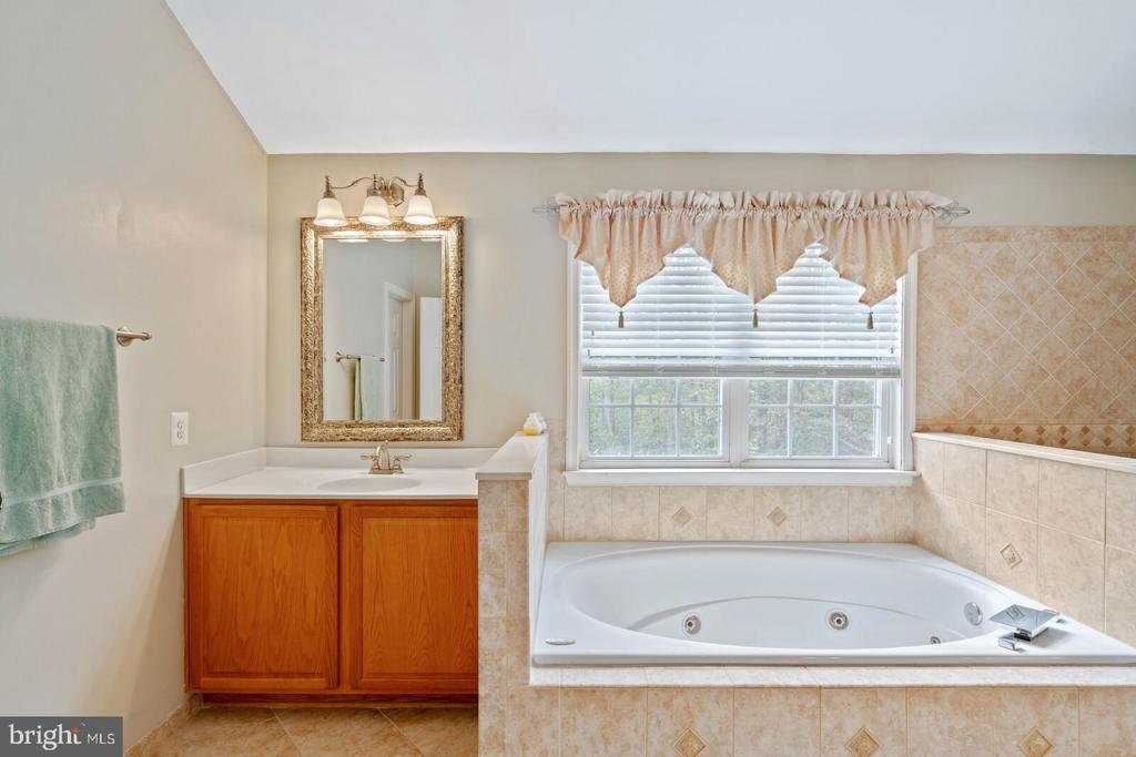MB  with Spa Tub, Sep Sinks, & Walk In Closet. - 7893 MEADOWGATE DR, MANASSAS