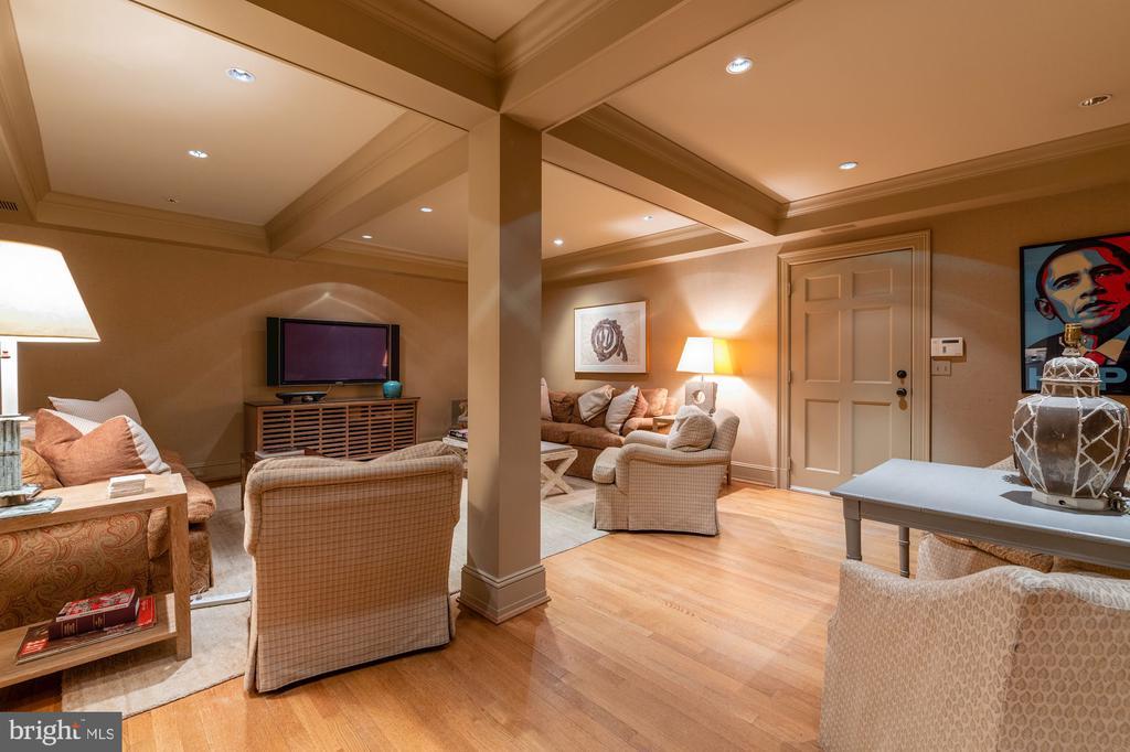 Family Room/Lower Level - 2829 WOODLAND DR NW, WASHINGTON