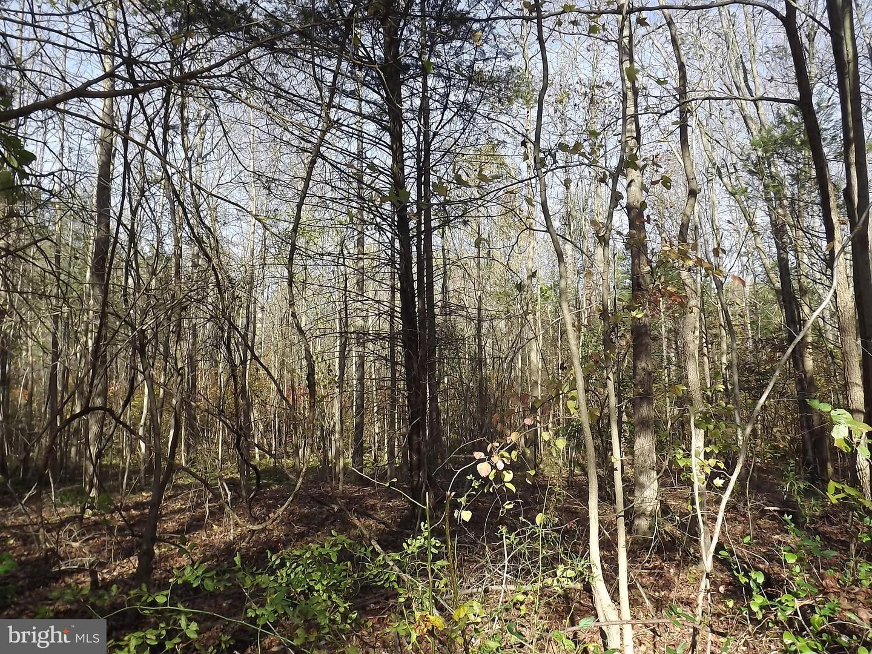 土地,用地 为 销售 在 Alloway, 新泽西州 08001 美国