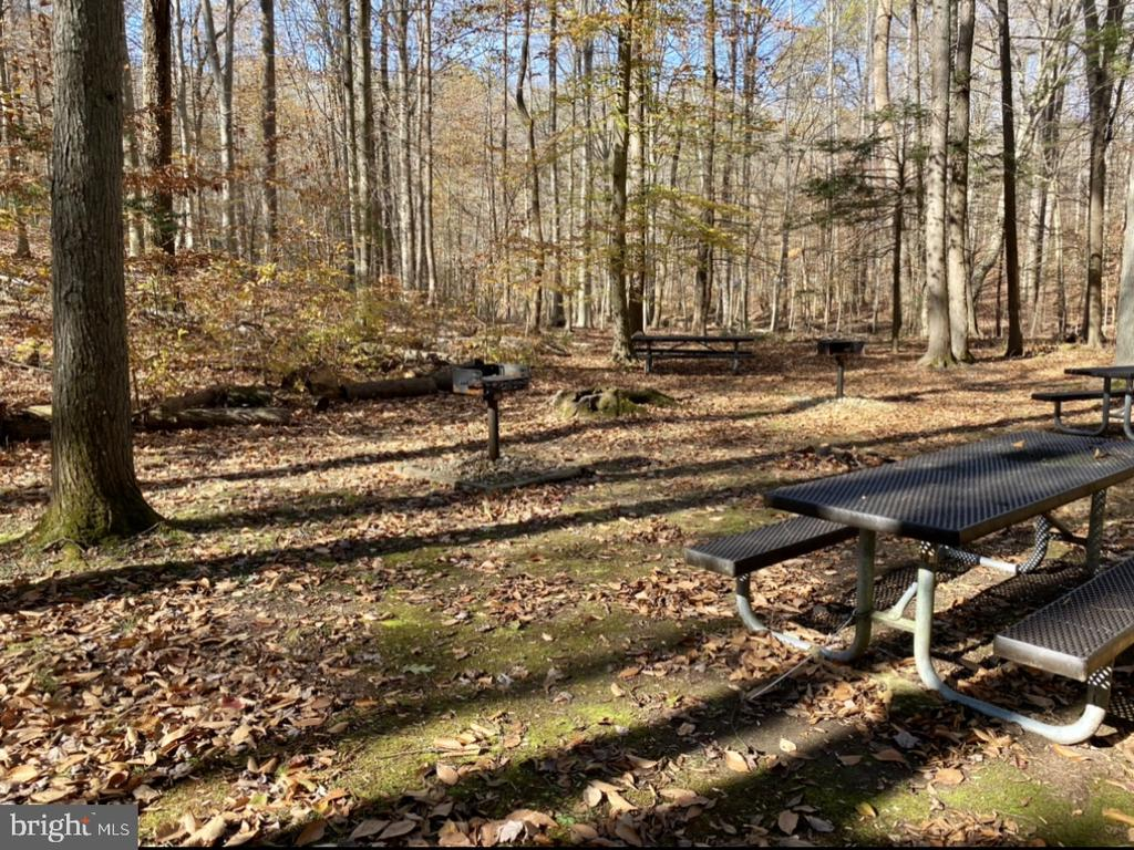 Pack a gourmet picnic at the 15 acre private park - 11798 TARGET CT, WOODBRIDGE