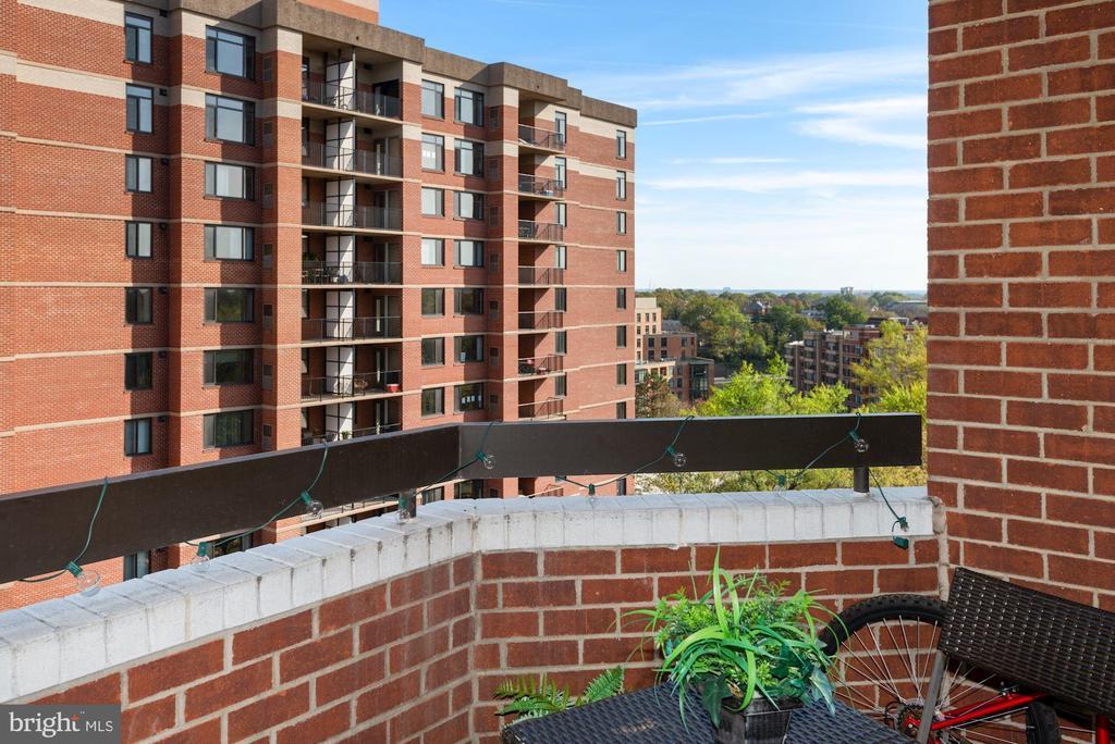 Living Room Balcony - 1276 N WAYNE ST #807, ARLINGTON