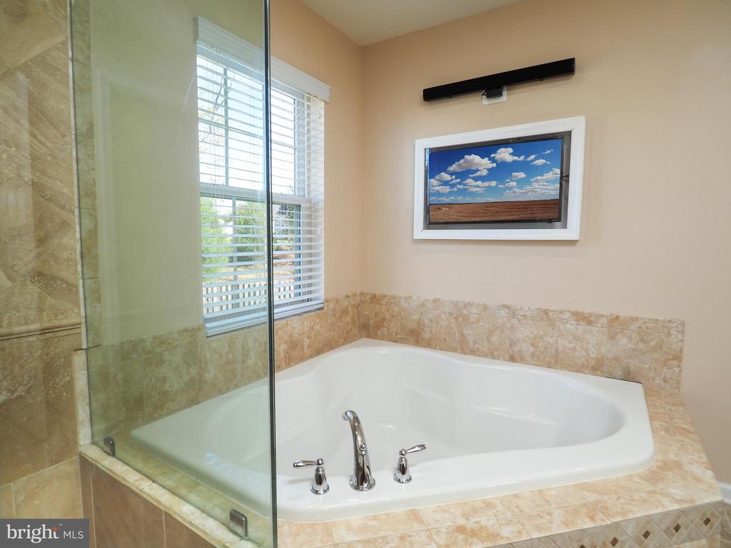Take a hot soak while watching your favorite show! - 14973 SPRIGGS TREE LN, WOODBRIDGE