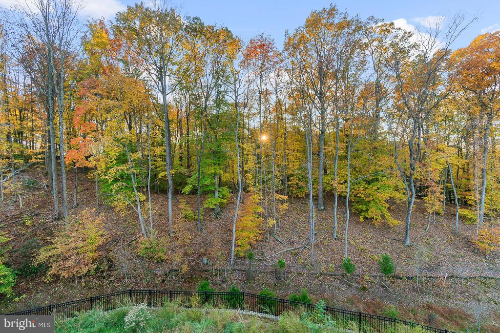 Sit on your deck and relax each day! - 18228 RED MULBERRY RD, DUMFRIES