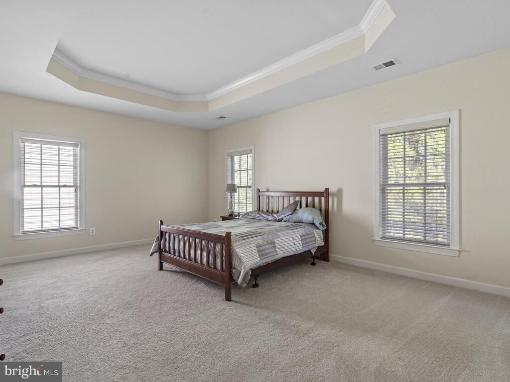 Primary Bedroom, Upper Level - 14136 SNICKERSVILLE DR, GAINESVILLE