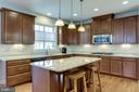 Imagine preparing meals in this fabulous space - 100 PEARL ST, HERNDON