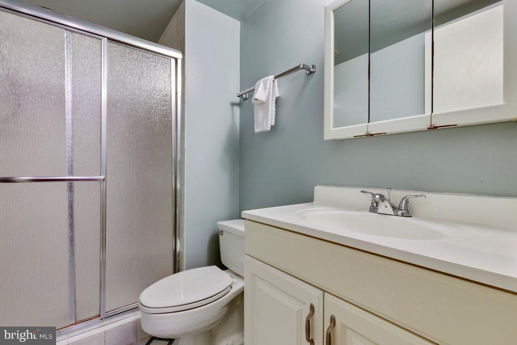 Lower level full bath - 2828 JERMANTOWN RD #51, OAKTON