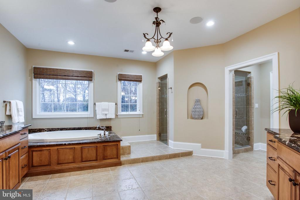 2 entrances to the large shower - 10464 SPRINGVALE MEADOW LN, GREAT FALLS